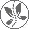 Masaż i Terapia Kręgosłupa